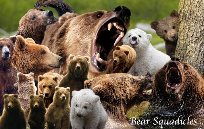 bear-squadicle